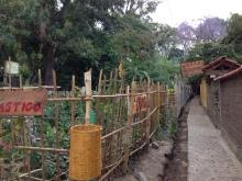 A garden in San Marcos