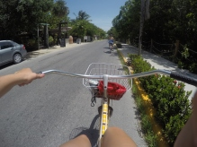 Biking to the ceyote